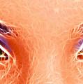 Angel Eyes by Sotiris Filippou