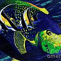 Angel Fish by Daniel Paul Hoffman