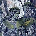 Angel by Sarka Olehlova