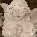 Angel Sepia by Samantha Black