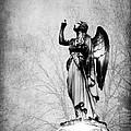Angel Series 05 by Cynthia Woods
