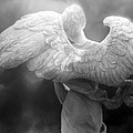 Angel Wings - Dreamy Surreal Angel Wings Black And White Fine Art Photography by Kathy Fornal