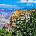 Angel's Window At Cape Royal On North Rim Of Grand Canyon-arizona by Ruth Hager