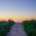 Angelsea Beach Path Before Sunrise by Bill Cannon