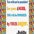 Anger Buddha Wisdom Quote Buddhism   Background Designs  And Color Tones N Color Shades Available Fo by Navin Joshi