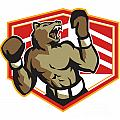 Angry Bear Boxer Boxing Retro by Aloysius Patrimonio