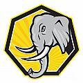 Angry Elephant Head Side Cartoon by Aloysius Patrimonio
