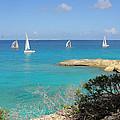 Anguilla Regatta by Kristin Bourne