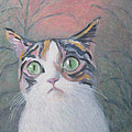 Anguish Of A Cat by Kazumi Whitemoon