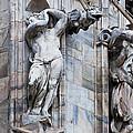 Animal Gargoyles Duomo Di Milano Italia by Sally Rockefeller