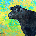 Animals Cow Black Angus  by Ann Powell