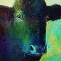 animals - cows- Black Cow by Ann Powell