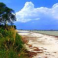 Anna Maria Island View by Lou Ann Bagnall