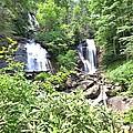Anna Ruby Falls - Georgia - 1 by Gordon Elwell