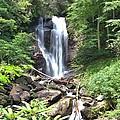 Anna Ruby Falls - Georgia - 2 by Gordon Elwell