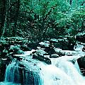 Anna Ruby Falls Watercolor Effect by Laurie Eve Loftin