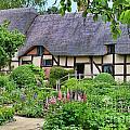 Anne Hathaways Cottage 5975 by Jack Schultz