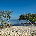 Annes Beach by Bruce Bain