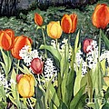 Ann's Tulips by Barbara Jewell