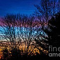 Another Beautiful Morning by Judy Wolinsky