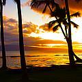 Another Maui Sunset by John Dauer