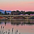 Another Pink Morning 2 by Lynn Hopwood