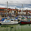 Anstruther Harbour by Marcia Colelli