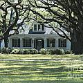Antebellum Home by Chris Selby