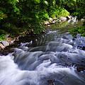 Antietam Creek - Maryland by Bill Cannon