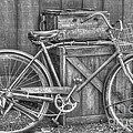 Antiquated Bike by Bianca Nadeau