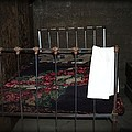 Antique Bed by Image Takers Photography LLC - Carol Haddon