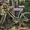 Antique Bike by Edward Shackleford