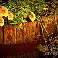 Antique Bucket With Yellow Flowers by Miriam Danar