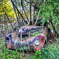 Antique Car With Trees In Windshield by Douglas Barnett