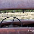 Antique Dodge by Carolyn Fox