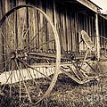 Antique Hay Rake by Lucid Mood