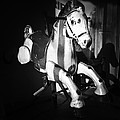 Antique Horse Bw by Patrick M Lynch
