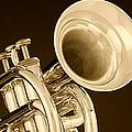Antique Trumpet by M K  Miller