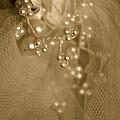 Antique Veil by Susan Herber