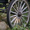 Antique Wagon Wheel  by Patricia Twardzik