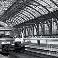 Antwerp Central Station II by Clarence Holmes