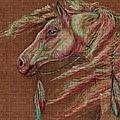 Apache Spirit by Amanda Hukill