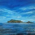 Apo Island by Richard John Holden RA