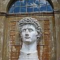 Apollo Statue At The Vatican by Carol Groenen