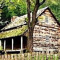 Appalachian Cabin by Desiree Paquette