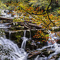 Appalachian Mountain Waterfall by Debra and Dave Vanderlaan