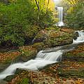 Appalachian Stream by Doug McPherson
