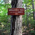 Appalachian Trail Sign North by Glenn Gordon