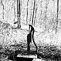 Appalachian Well Pump by R David Johnson
