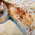 Appaloosa Spirit 3618 by Marcia Baldwin